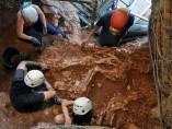 Descubren en Castelldefels el esqueleto de una especie extinguida de rinoceronte