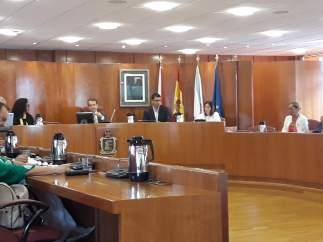 Vecinos de Coruxo intervienen en el pleno de Vigo