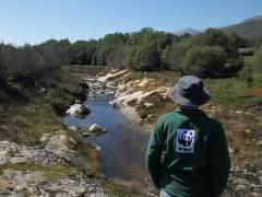WWF pide eliminar los miles de diques obsoletos que hay en Europa para revitalizar los ríos