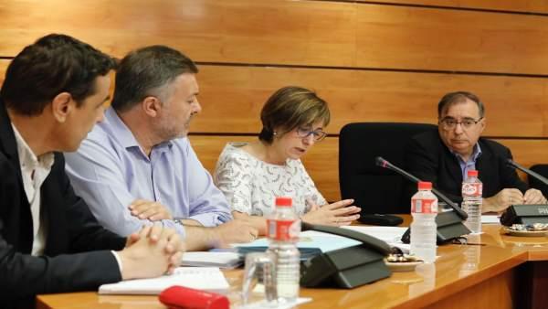 Comisión en las Cortes