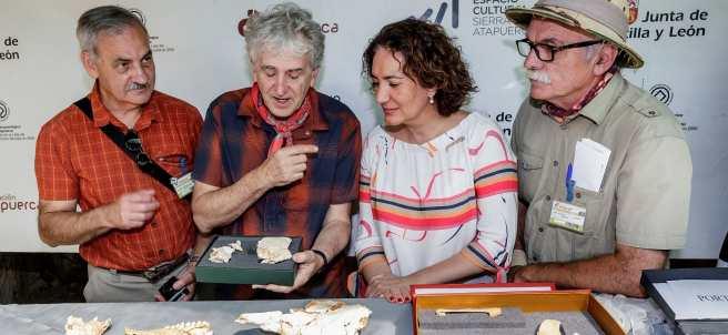 José María Bermúdez de Castro (i), Juan Luis Arsuaga (2i), Eudald Cabonell (2d) y la consejera de cultura y turismo de la Junta de Castilla y León, María Josefa Cirac (1d), presentan el balance de la campaña de excavaciones de Atapuerca 2018.