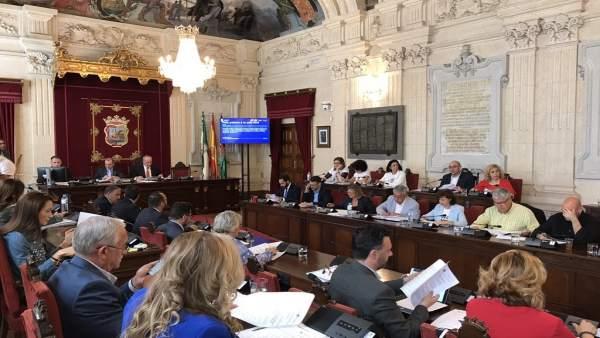 Pleno del Ayuntamiento de Málaga. Mayo.