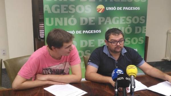 Bernat Ramon y Francesc Pena, miembros de la sectorial de la fruta