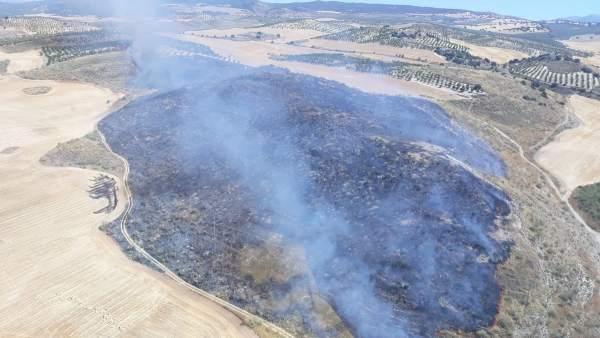 El incendio forestal en Ventas De Huelma