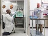 Bioingeniería de los pulmones