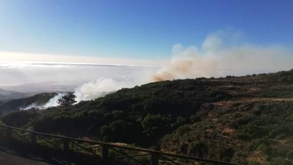 Fuego en la zona de La Pasadilla y Cazadores