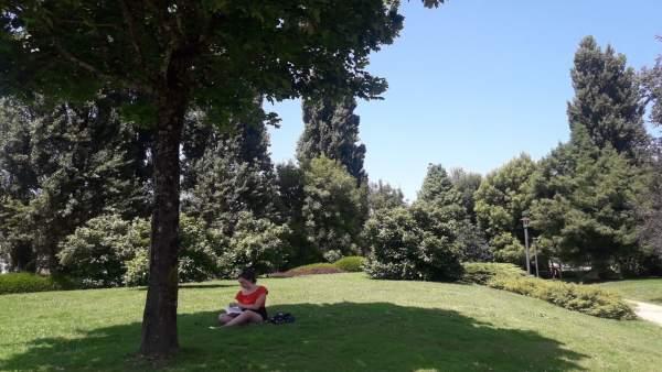 Joven a la sombra ante las elevadas temperaturas en Galicia