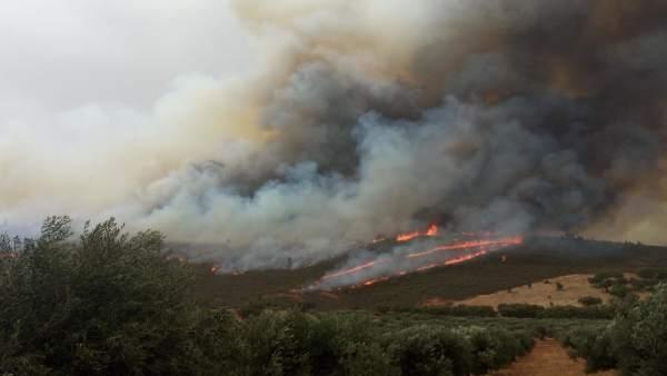 Llamas y humo en el incendio de San Vicente de Alcántara