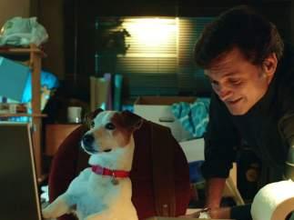 Los perros más famosos del cine y la televisión