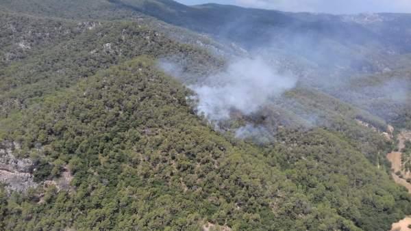 Incendio en Coanegra