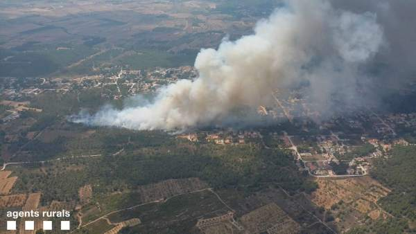 Incendio forestal en Cabra del Camp (Tarragona)