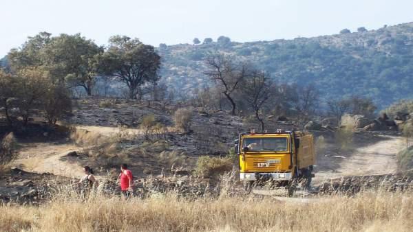 Restos de un incendio forestal, en una imagen de archivo