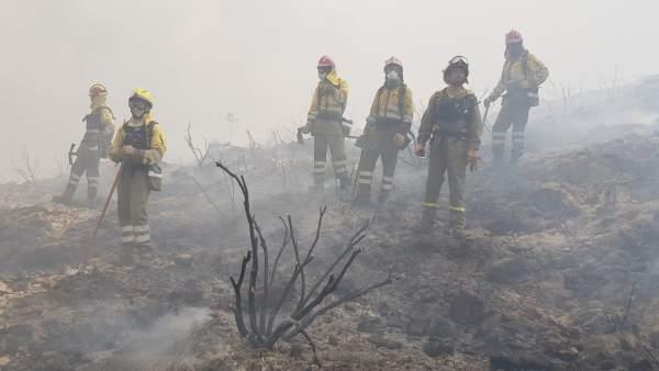 Imagen de los efectivos murcianos desplegados en el incendio de Llutxent