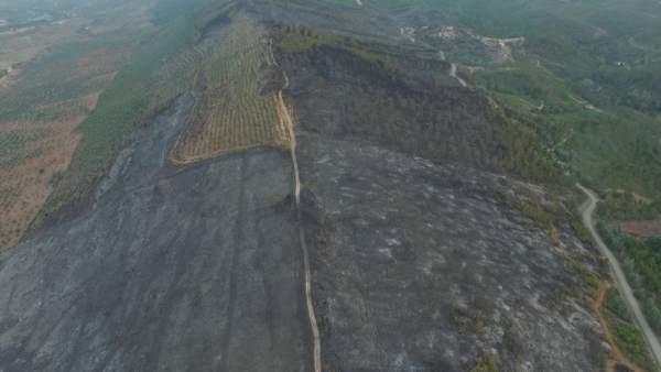 Incendio San Vicente de Alcantara