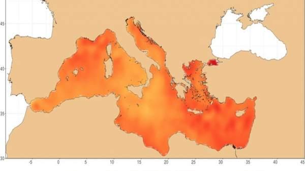 El mar Mediterráneo alcanza los 30ºC por la ola de calor