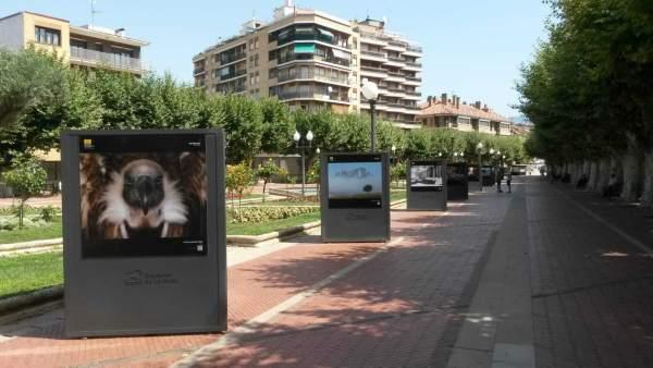 Exposición Haro sobre fotografías naturaleza
