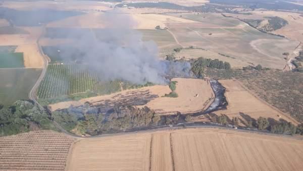 Incendio forestal en Almodóvar del Río