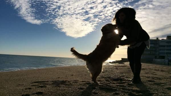 Mujer con un perro en la playa