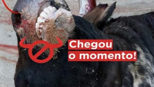 Cartel de la campaña '#ChegouOMomento' contra la tauromaquia.