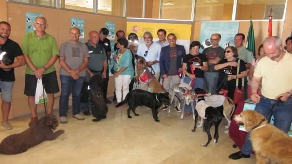 Presentada la campaña para la tenencia responsable de animales en Cádiz