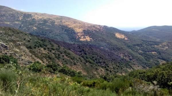 Aspecto del incendio en Garganta la Olla que evoluciona favorablemente
