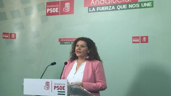 La secretaria de Organización del PSOE de Cádiz, Araceli Maese