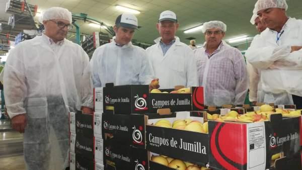 Del Amor visita la Cooperativa Hortofrutícola Campos de Jumilla