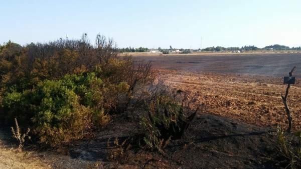 Bomberos de Chiclana intervienen en un incendio próximo a viviendas
