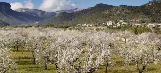 Equinoccio de primavera: ¿por qué empieza hoy la primavera y no otro día?