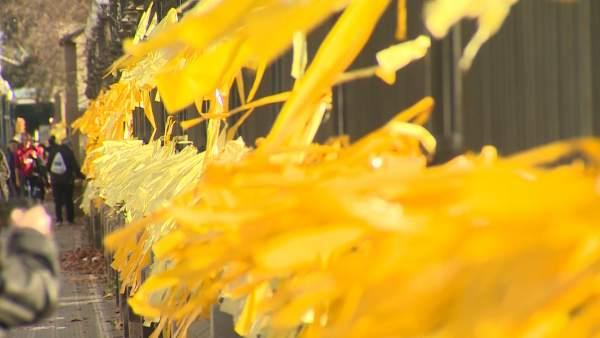 Lazos amarillos