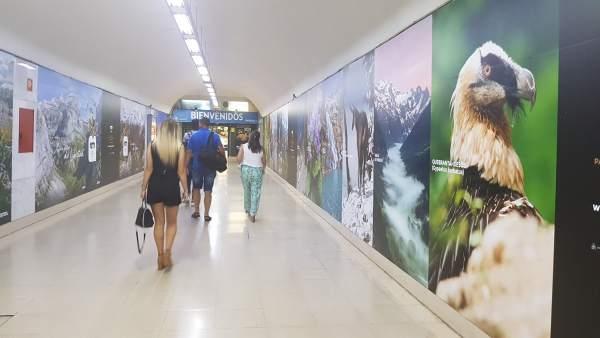 Estación de Autobuses Sur de Madrid.
