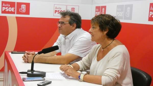 Mercedes Martín, en rueda de prensa en Ávila.