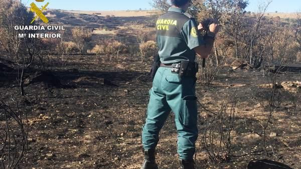 Investigaciones de la Guardia Civil sobre el incendio.