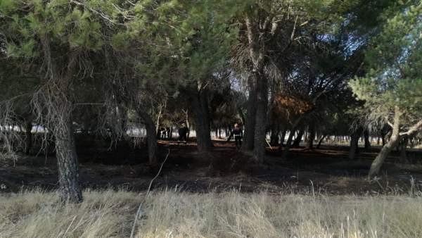 Valladolid.- Bomberos actuando sobre la superficie quemada en Las Flores