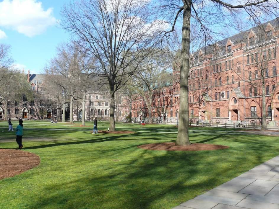 15. UNIVERSIDAD DE YALE (EE.UU.). Este centro privado está ubicado en New Haven (Connecticut) y es uno de los más prestigiosos y respetados del mundo. Abrió sus puertas en 1701 y es muy famoso por su Facultad de Derecho. Ha obtenido una puntuación global de 89,6
