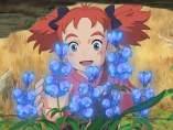 Mary y la flor de la bruja.