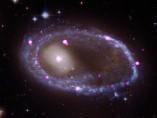 Anillo de agujeros negros o estrellas de neutrones