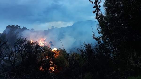 Incendio forestal en Albuñuelas (Granada)