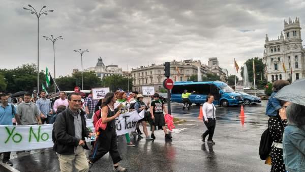 Manifestantes por un tren digno en Extremadura en Madrid