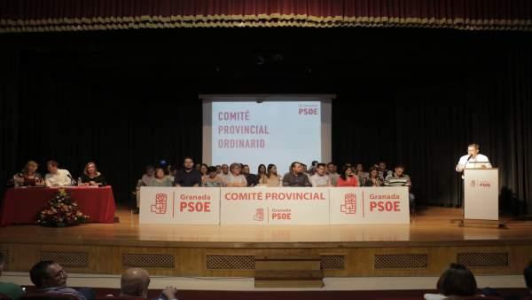 Comité Provincial del PSOE de Granada