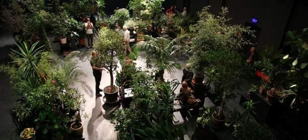 Conde Duque estrena temporada con la instalación efímera 'Garden State'