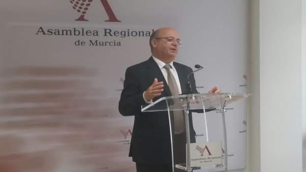 Luis Fernández, en rueda de prensa