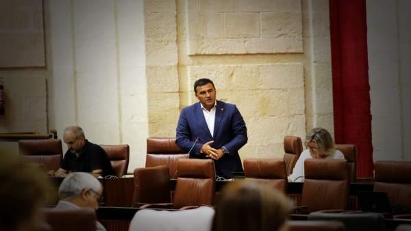 Carlos Hernández White (Cs) en el Parlamento andaluz