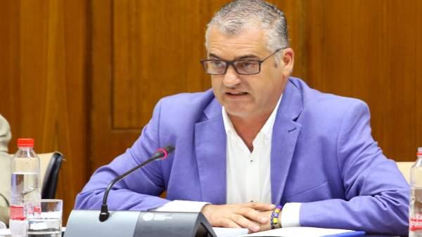 Javier Carnero, en comisión parlamentaria.