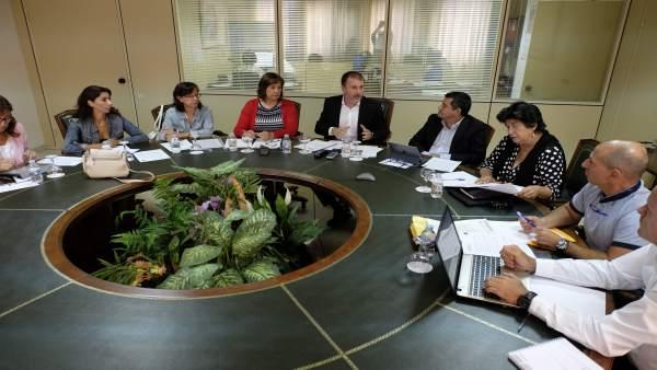 Reunión del Consejo General de Empleo del Gobierno canario