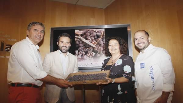Actividades de Sabor e Málaga en el Mes de la Pasa de Vélez