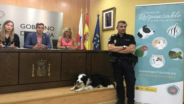 Presentación de la campaña nacional sobre tenencia responsable de animales