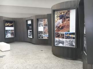 Una exposición repasa en el MEH los 40 años de excavaciones en Atapuerca 11-9