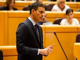 El presidente del Gobierno Pedro Sánchez en el Senado