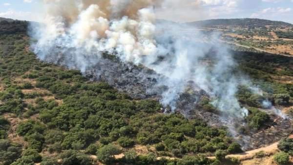 Incendio forestal en Jerez de los Caballeros